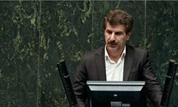 کاظم زاده: دولت با احیا وزارت بازرگانی به دنبال سرگرم کردن مردم است