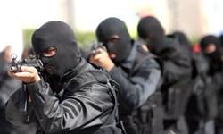 ضربه سپاه به باند بزرگ قاچاق انسان در آذربایجانغربی/ ۳۰ تبعه خارجی آزاد شدند
