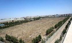 فارس من|ربع قرن تلاش برای تغییر کاربری یک باغ/عزم عمومی برای حفظ «باغ سالاریه»