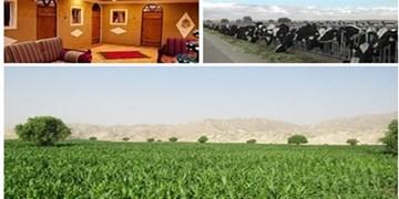 فارس من| قوچان رتبه اول اشتغالزایی روستایی و عشایری را در خراسان رضوی دارد