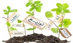 کارآفرین برجسته کشور در زنجان سخنرانی میکند