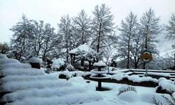 سنگینترین برف 97 در بخش کجور / نبرد نابرابر امکانات با طبیعت + فیلم