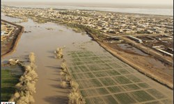 بارندگیهای «درمیان» خسارتی نداشت/ تخلیه روستای سراب قهستان