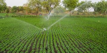 مصرف آب کشاورزی کمتر از ۷۰ درصد است