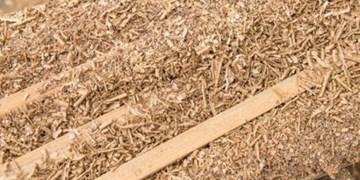 پلمب کارگاه تولید تنباکو با خاک اره!