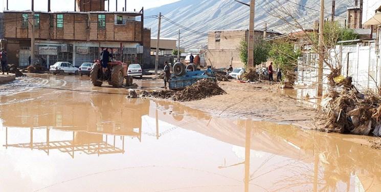 کاظمی: خسارت زمینهای کشاورزی آسیبدیده از سیل پلدختر هنوز جبران نشده است