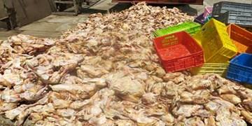 حکم جالب یک مقام قضایی برای عرضهکننده مرغ غیرقابل مصرف/ خرید ماسک و ضدعفونیکننده برای نیازمندان دهگلانی
