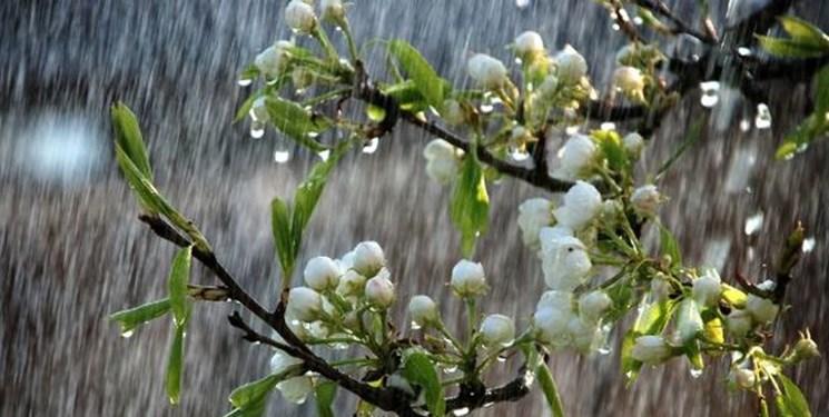 باران بهاری و وزش باد شدید در اغلب استانها/بندرعباس داغ ترین شهر کشور