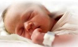 نگرانی در مورد تداوم کاهش نرخ زاد و ولد در آمریکا