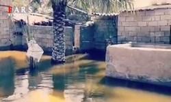 فیلم   روستای گرمه شادگان زیر آب