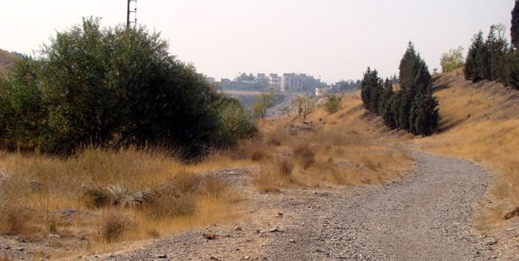 پارکی در تهران با ۵۳۰ گونه گیاهی ارزشمند/شهرداری ملزم به ثبت میراث طبیعی  پردیسان