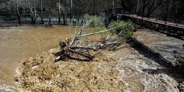 بازسازی و مرمت ۸۰ درصد از سردهنههای تخریبی رودخانههای مازندران