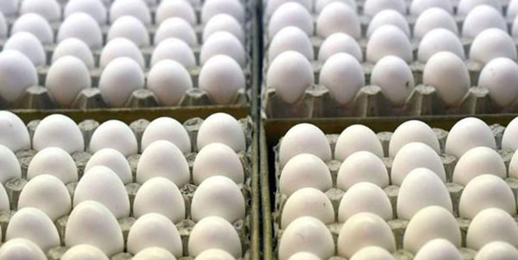 خودکفایی آذربایجانشرقی در تولید تخممرغ /صادرات  50درصد تخممرغ استان