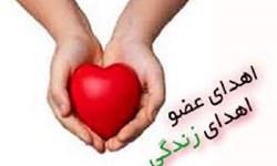 اهدای اعضای جوان دهگلانی به چند بیمار جان دوباره بخشید/ اهدای اعضای 47 بیمار مرگ مغزی در استان