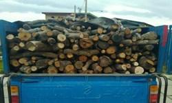 کشف 4/5 تن چوب جنگلی قاچاق در تنکابن
