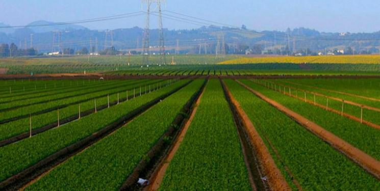 وقف ۱۲ هزار مترمربع زمین کشاورزی در شهرستان بروجن