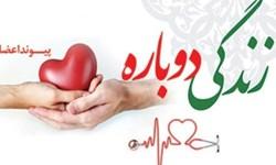 فارس استان پیشرو در عرصه اهدای اعضا/داراب جایگاه دوم استان را به خود اختصاص داده است