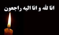 پیام تسلیت فرمانده سپاه عاشورا در پی درگذشت همسر شهید تجلایی