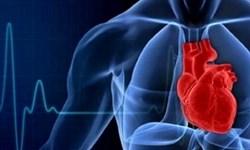 بیماریهای قلبی عامل 50 درصد مرگ و میرها در کشور/ کسب رتبه 16 در تولید علم و پژوهش