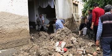 فیلم/ خسارات و مشکلات پس از سیل در روستای علیآباد داورزن