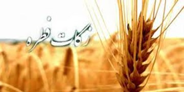 میزان زکات فطره در سال 98 / میزان زکات فطره قیمت متوسط گندم یا برنج است