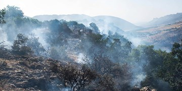 مهار آتش سوزی در کوههای کردلان دشتی