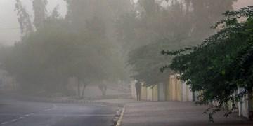 هشدار هواشناسی نسبت به وزش باد شدید در کرمان