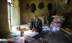 ضعف صنایع تبدیلی  عامل خامفروشی محصولات کشاورزی کردستان است
