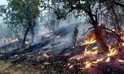 آتشسوزی در ارتفاعات «رنو» مهار شد