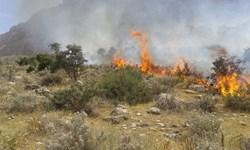 شعلهور شدن مجدد آتش در منطقه «رنو»