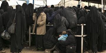 یوروپل: داعش به دنبال به کارگیری زنان در حملات تروریستی است