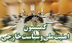 6 کمیته تخصصی در کمیسیون امنیت ملی مجلس تشکیل شد