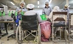 موانع موفقیت معلولان در جامعه باید شناسایی و رفع شود