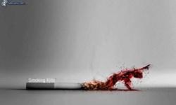 عوارض خطرناک مصرف سیگارهای قاچاق/ آسیبهای دخانیات قاچاق به اقتصاد و نظام سلامت