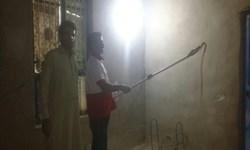 زندهگیری یک حلقه مار از یک منزل مسکونی در مهرستان