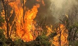 آتش به جان علفهای هرز در زنجان افتاده است
