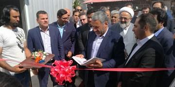 افتتاح بزرگترین مزرعه صنعتی مرغ تخمگذار استان سمنان