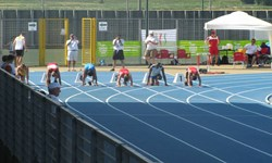 افزايش تعداد ورزشكاران سازمان يافته در مراغه