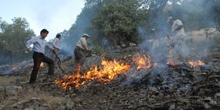 آتش زدن«پسچر» مهمترین علت آتش سوزی مراتع کرمانشاه است