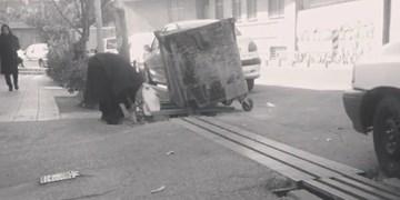 جستوجوی نان لابلای آشغال/ «کرونا» سوار بر زبالهگردی + عکس و فیلم