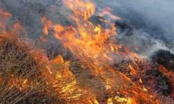 دو آتش سوزی در مراتع فیروزکوه