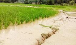 پرداخت  ۱۹۱ میلیاردی خسارت سیل در قیروکارزین