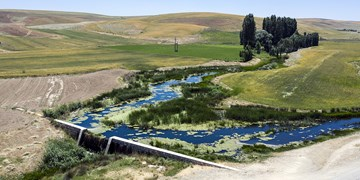 پیشرفت فیزیکی 45 درصدی پروژه آبخیزداری حوزه قرطوره بیجار