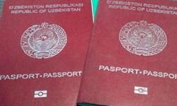 رتبه 88 ازبکستان در ردهبندی گذرنامههای جهان