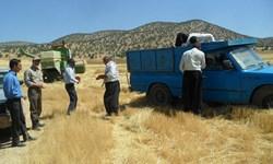 كشاورز نمونه اسلامآبادی از يک هكتار 4000 کیلوگرم گندم دیم برداشت كرد