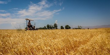سامانه سنجش از راه دور رصد مزارع راهاندازی میشود