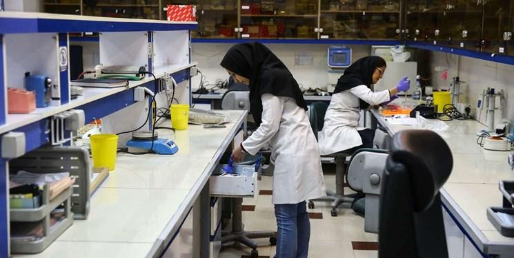پژوهش نتیجه بخش محققان رویان و  دانشگاه تهران/ استفاده ازسلولهای غلاف خارجی ریشه برای درمان ریزش مو