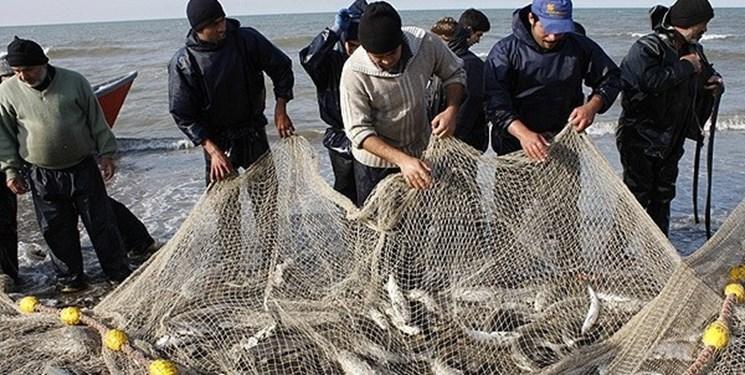 ۱۲۰ تن ماهی قزلآلا در بندر کیاشهر صید شد