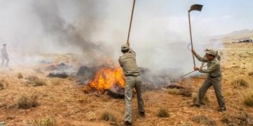 ویدئو کامنت| وقوع 4 فقره حریق در مراتع و جنگلهای چهارمحال و بختیاری