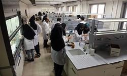 سالانه ۴ هزار طرح پژوهشی به صندوق حمایت از پژوهشگران ارسال میشود